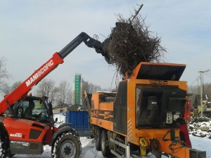 odvoz a likvidace biomasy